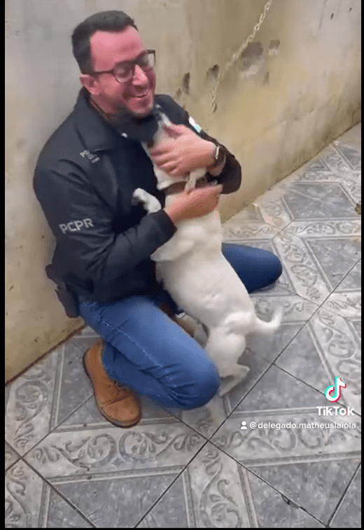 Screenshot of video showing the chained up dog kissing the man who freed her.   Source: Facebook/Delegado Matheus Laiola