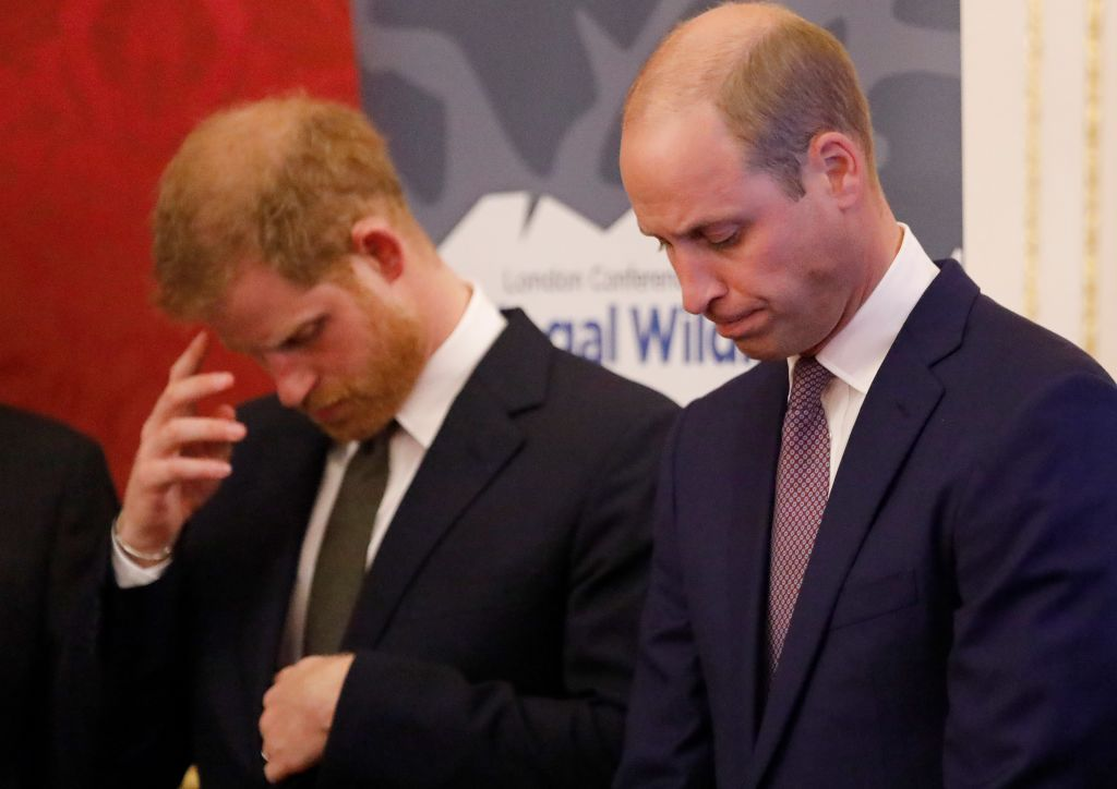 Prince William, Duke of Cambridge, and Prince Harry, Duke of Sussex, hosting a reception to officially open the 2018 Illegal Wildlife Trade Conference at St James' Palace in London, England | Photo: Tolga Akmen - WPA Pool / Getty Images
