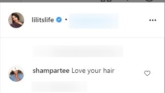 Fan's comments under a picture of Lilit Bush posted on Instagram | Photo: Instagram/lilitslife