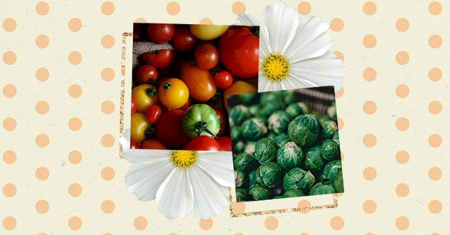 10 Vegetables To Grow This Summer
