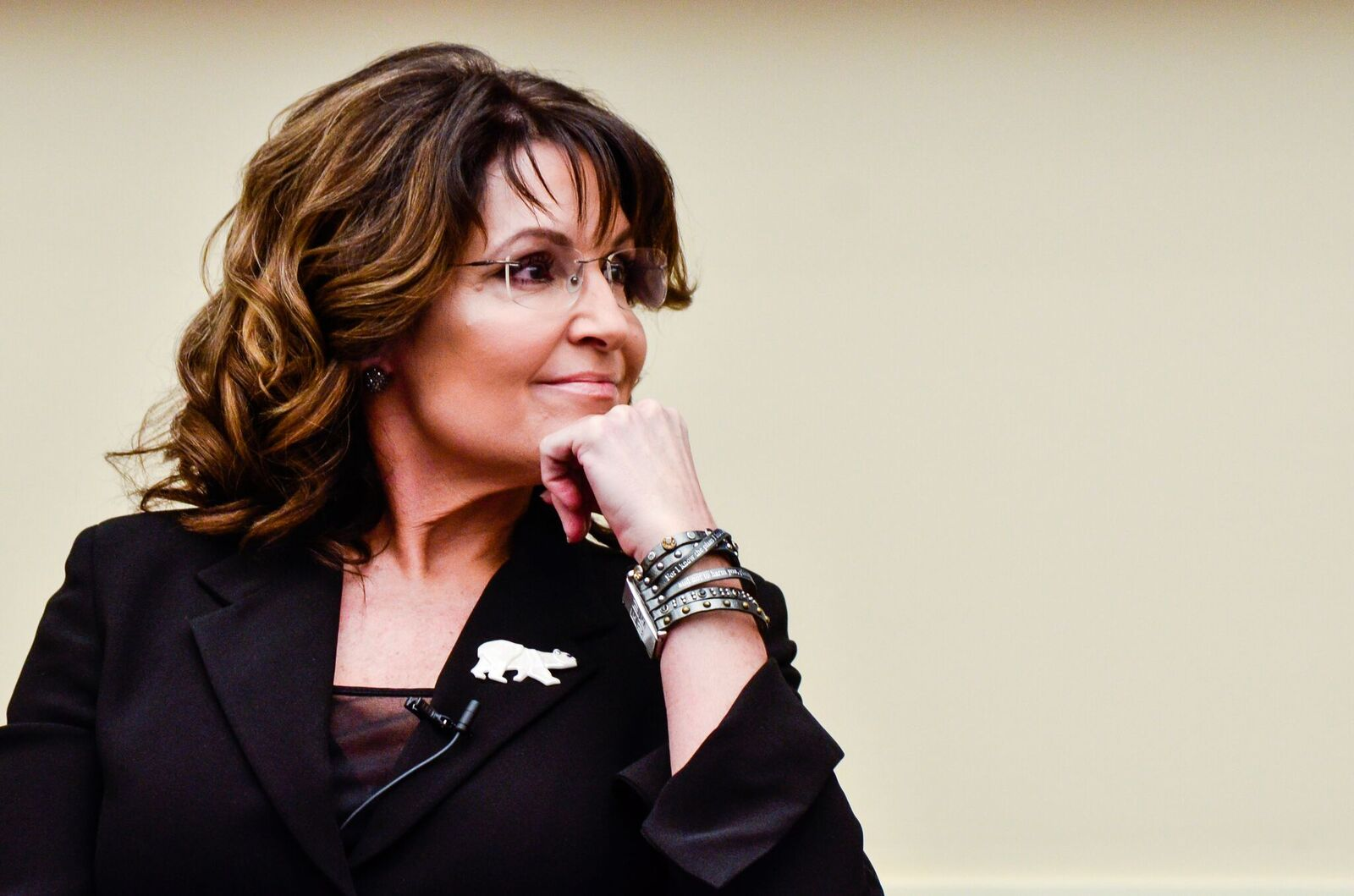 """Former Governor Sarah Palin speaks during the """"Climate Hustle"""" panel discussion at the Rayburn House Office Building on April 14, 2016 in Washington, DC 