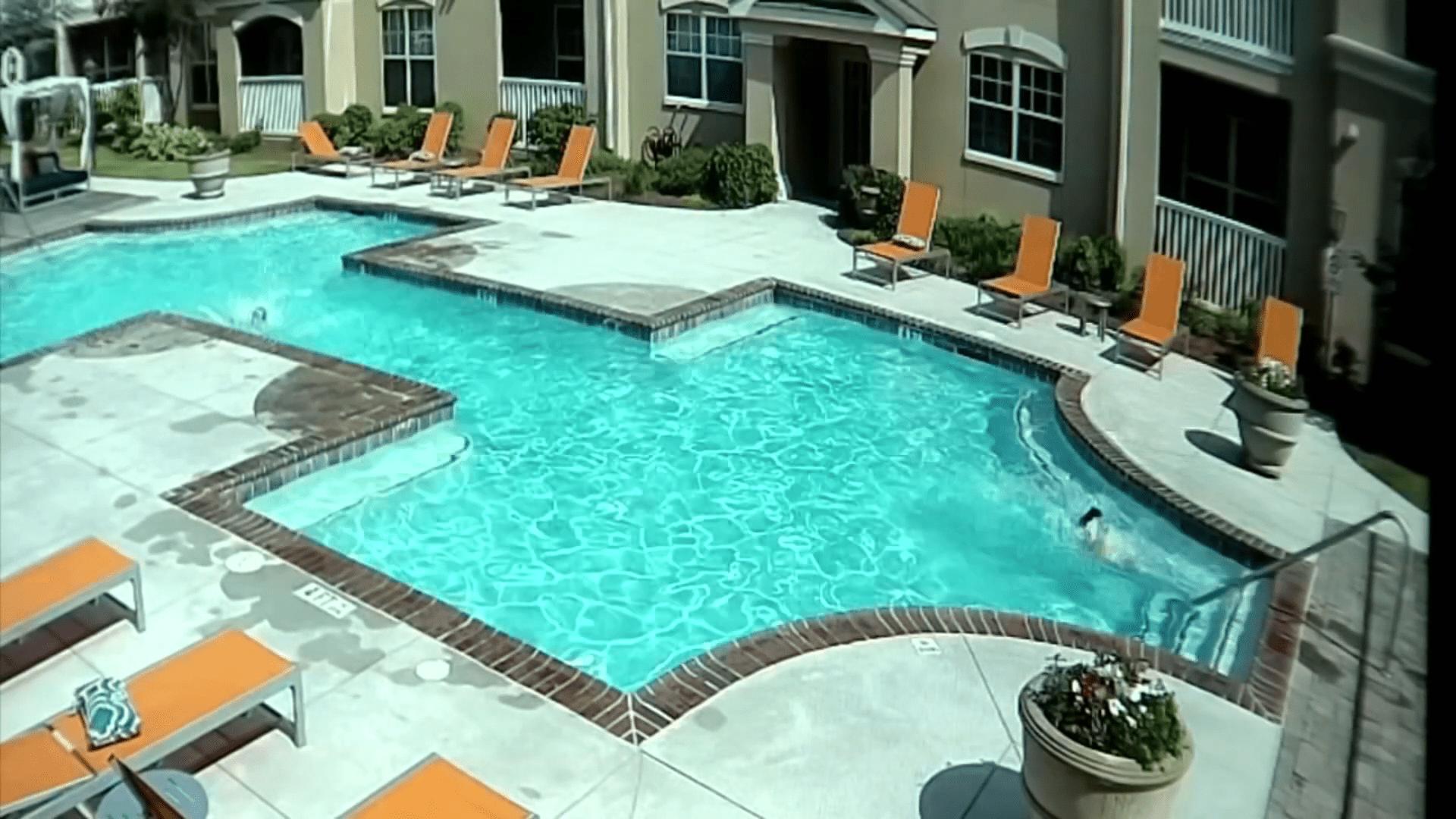 Kali entrando en la piscina │Imagen tomada de: YouTube /  WSAV3