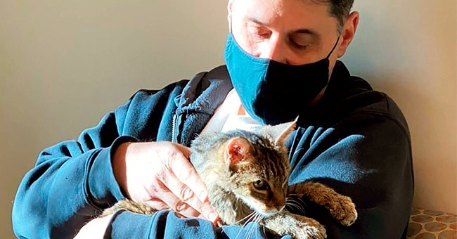 Cat Reunited with Owner 15 Years after She Went Missing — Here's What Happened