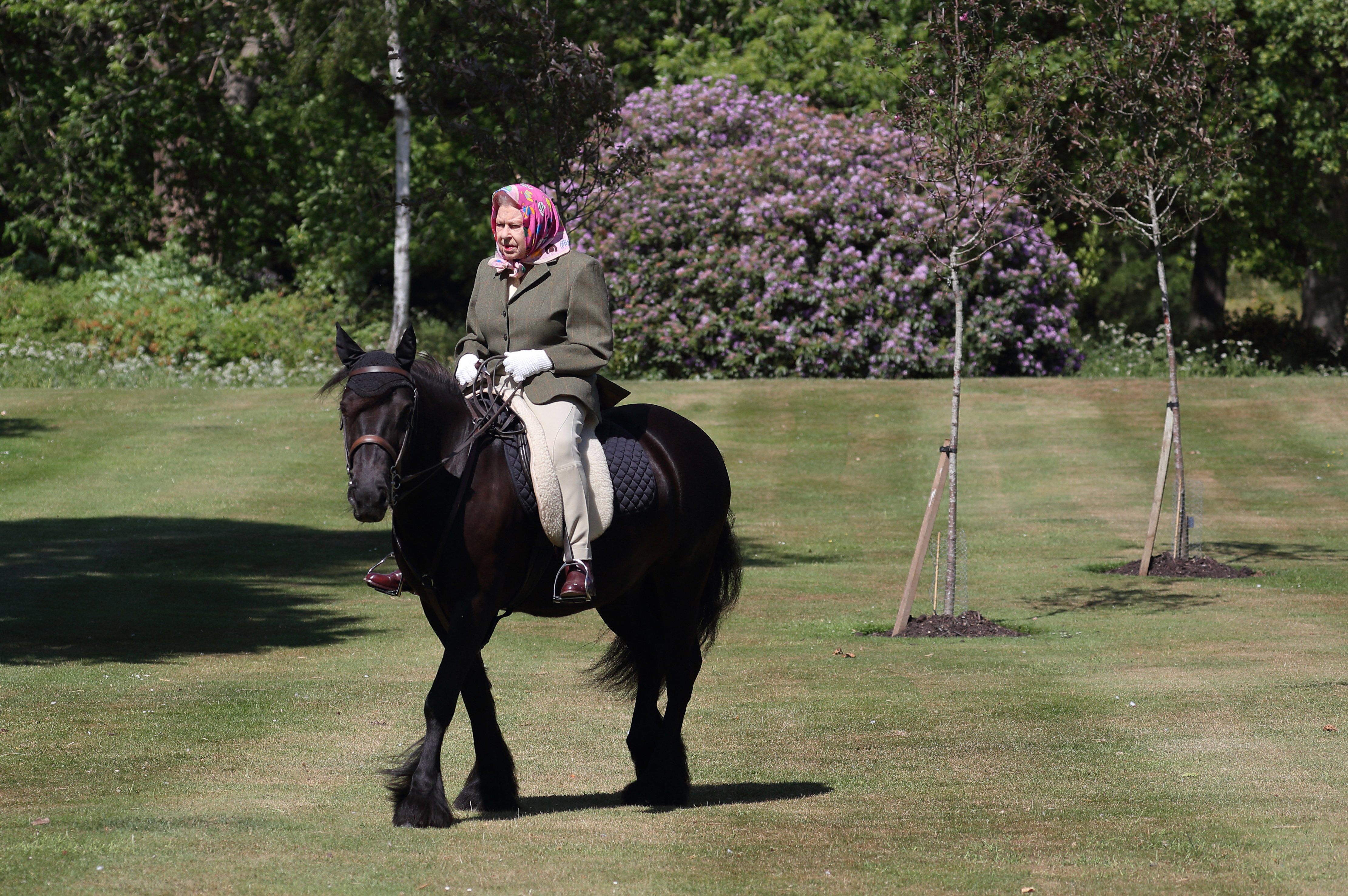 Queen Elizabeth II rides Balmoral Fern, a 14-year-old Fell Pony, in Windsor Home Park over the weekend of May 30 and May 31, 2020, in Windsor, England. | Source: Getty Images.