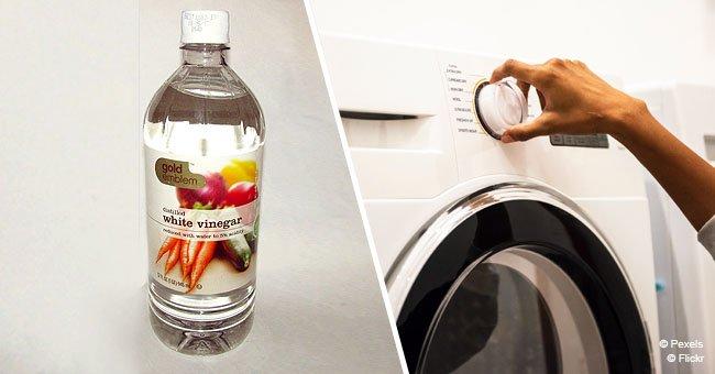 Warum du anfangen musst, deiner Waschmaschine Essig beizufügen