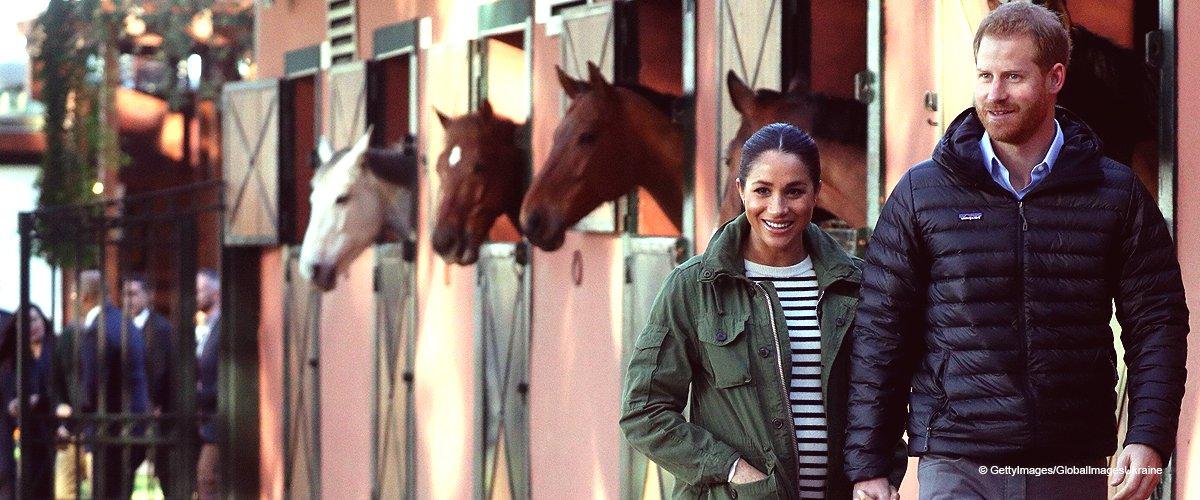 Harry hebt Meghan Markles Pferdeschwanz in einem süßen romantischen Video