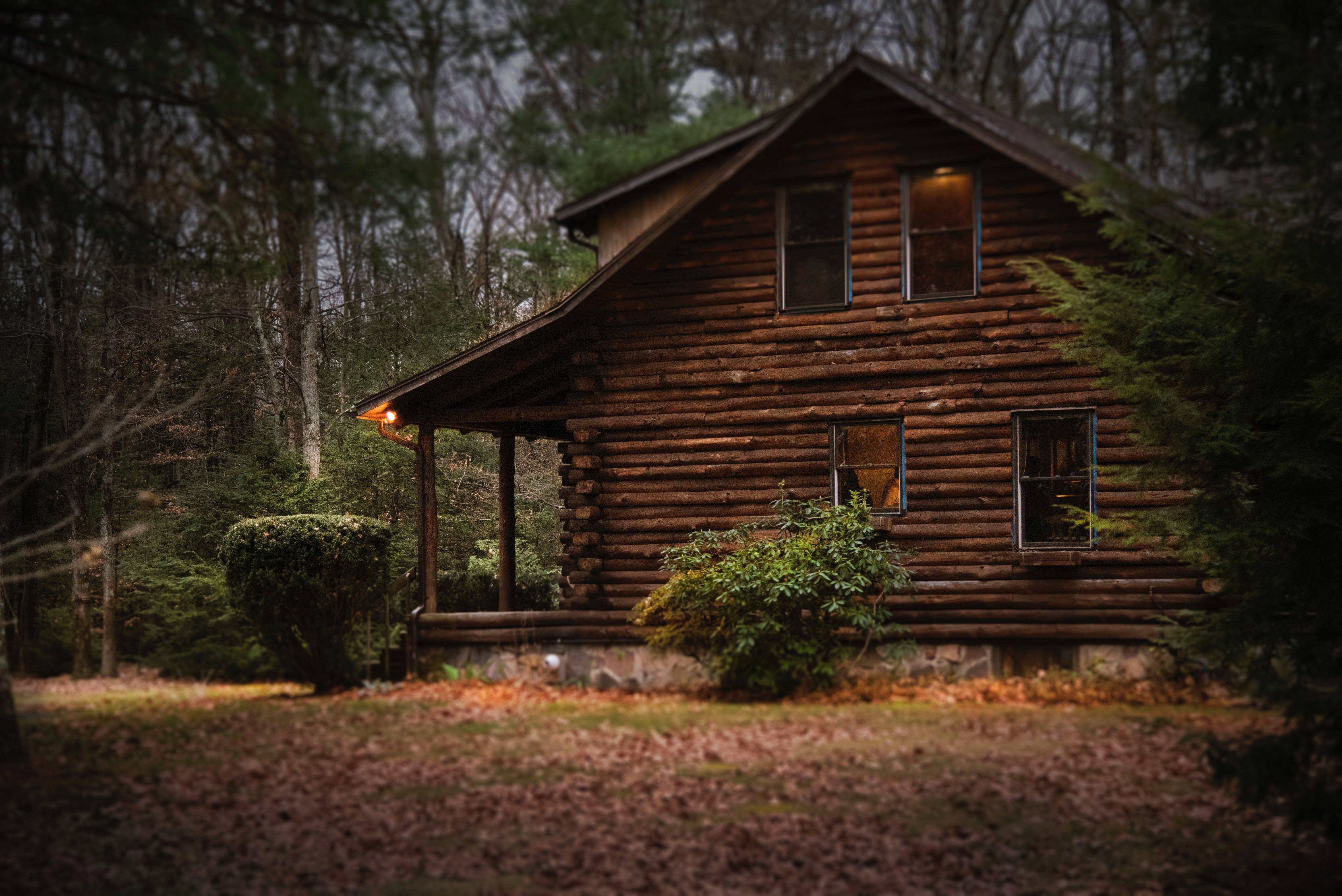Pictured - A brown cabin in the woods | Source: Pexels