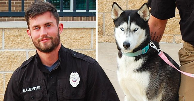 Dog's Adoption Photo Goes Viral After Handsome Shelter Worker Steals All the Attention