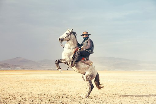 A travelling cowboy and his horse. | Photo: pixabay.com