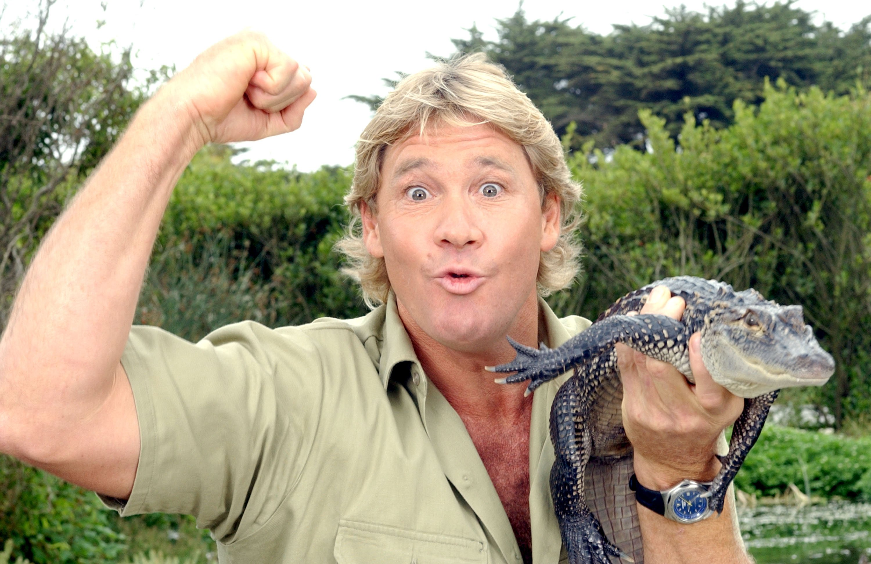 """The Crocodile Hunter"""", Steve Irwin, poses with a three foot long alligator at the San Francisco Zoo . Photos: Getty Images"""