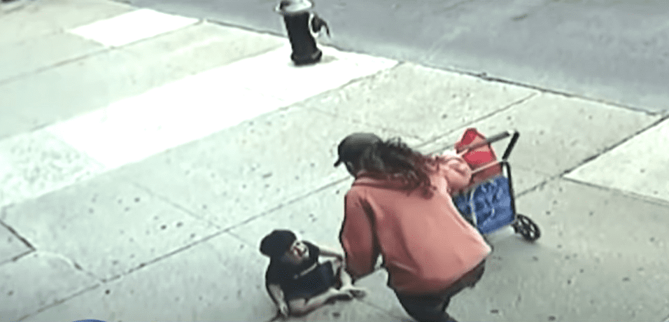 Surveillance video from a Bronx store shows a woman helping Jose Garcia. | Photo: YouTube/CBS New York