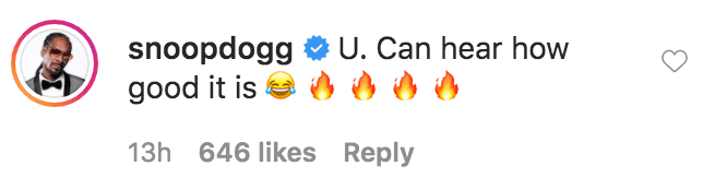 Snoop Dogg commented on a video he posted of a brunch he prepared cooking on the stove | Source: Instagram.com/snoopdogg