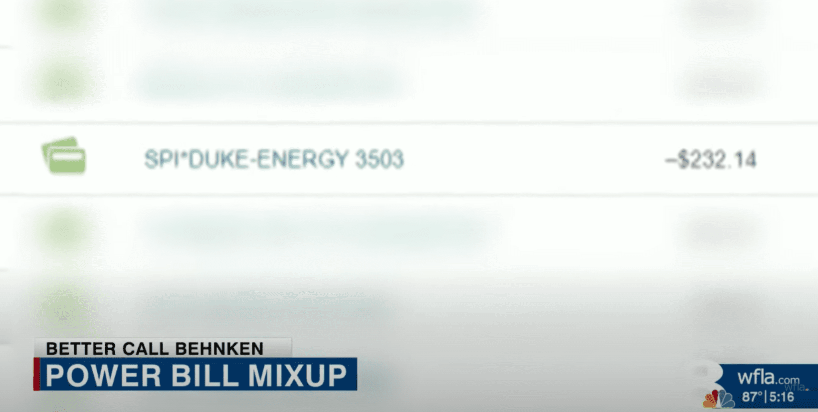 Bank statement reflects the debit payment made from a woman's account to an unknown energy company   Photo: Youtube/WFLA News Channel 8
