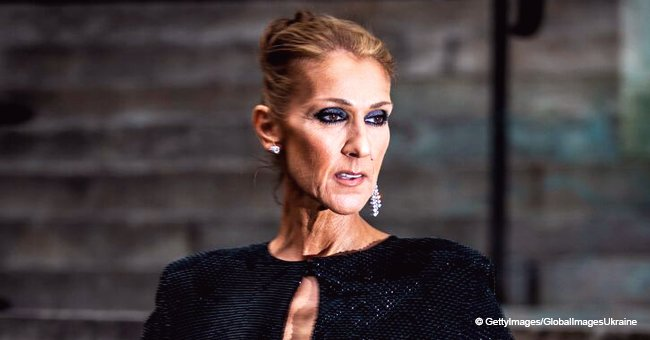 Céline Dion's First English Interview Gave a Glimpse into Her Huge Family: Where Are They Now?