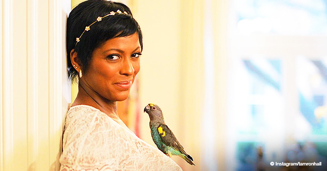 Tamron Hall Proudly Flaunts Her Growing Baby Bump in Sheer Lacy Dress in New Photo