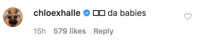 Chloe and Halle commented on a photo of Megan thee Stallion taking a selfie with her French Bulldogs Dos and 4oe | Source: Instagram.com/theestallion