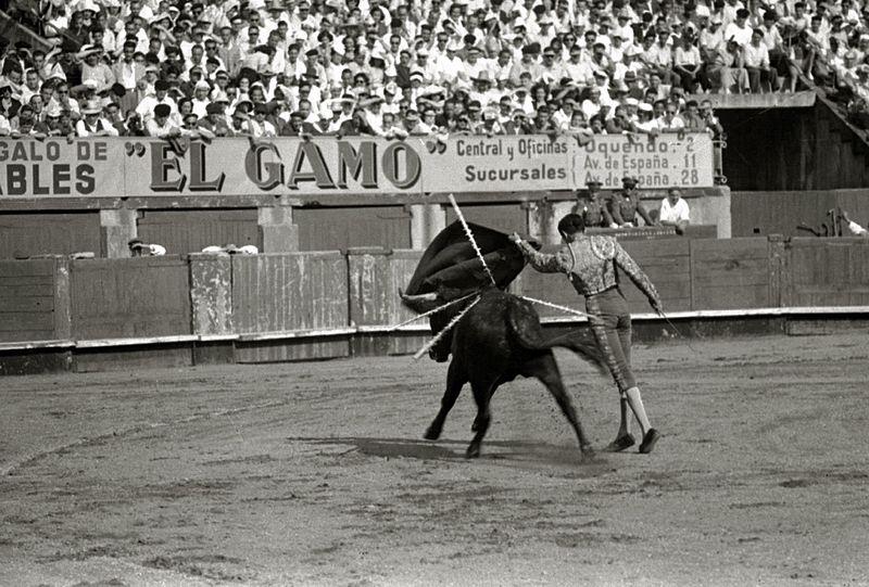 Corrida de toros en la plaza de 'El Txofre', provincia Gipuzkoa, España.   Imagen: Wikimedia Commons