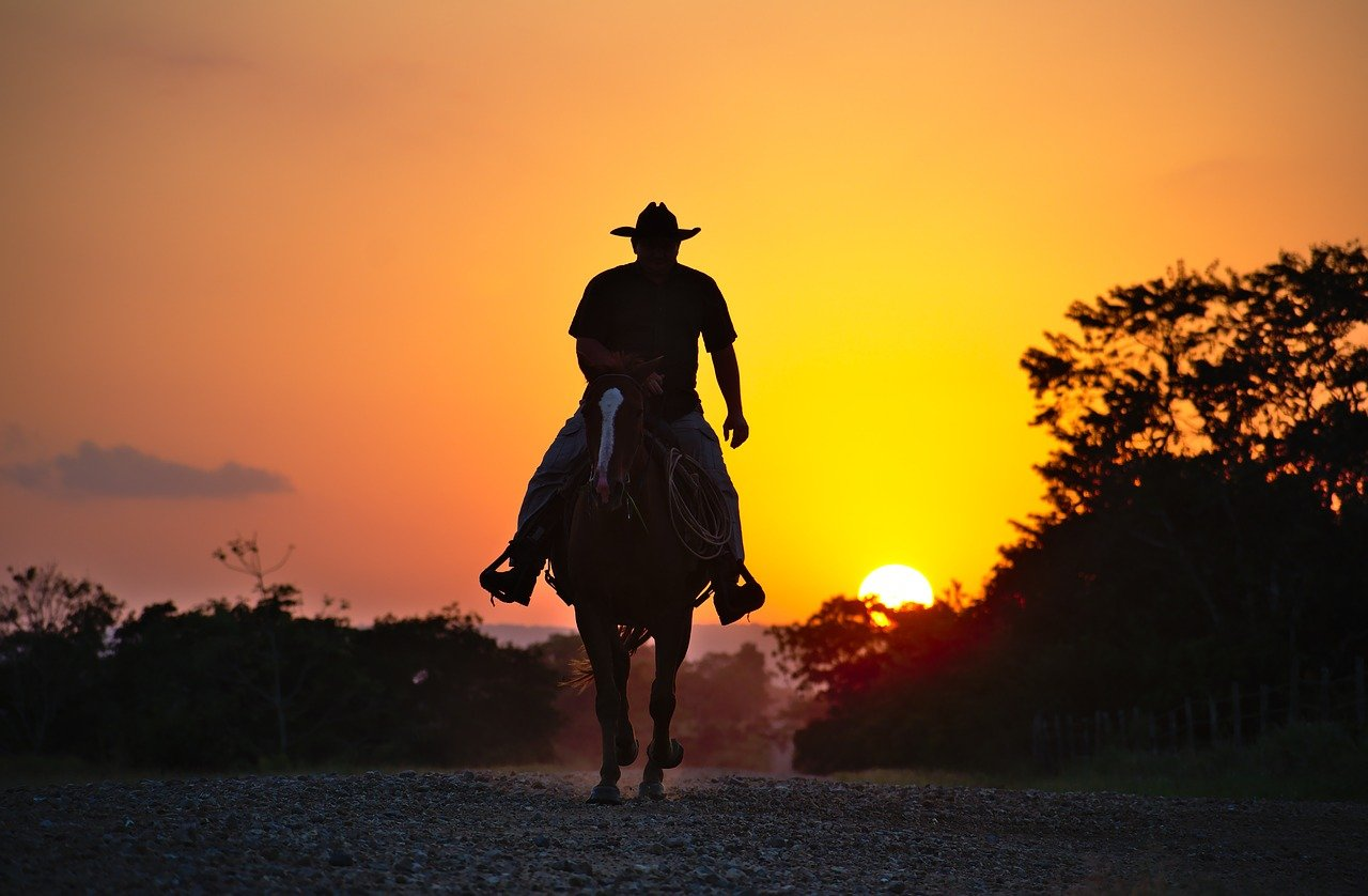 A shadowy image of a cowboy riding off in the sunset on his horse   Photo: Pixabay
