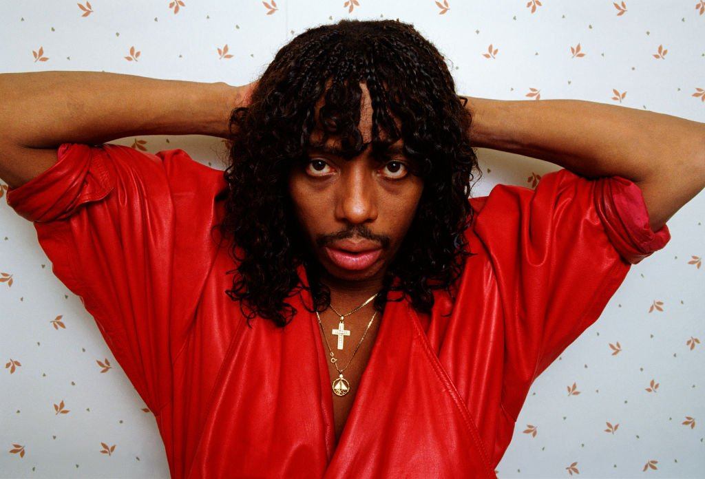 Rick James poses during a 1987 West Hollywood, California photo session | Photo: Getty Images
