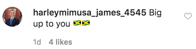 A fan commented on a photo of Nene Leakes eating prawn skewers in Jamaica | Source: Instagram.com/neneleakes