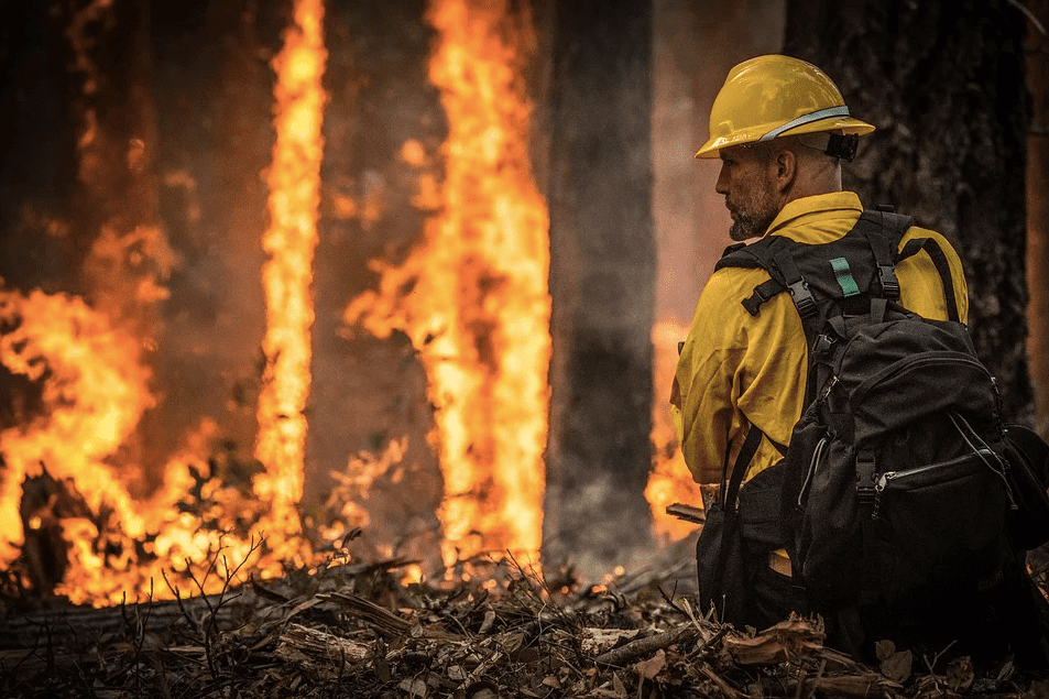 A firefighter looks on during a wildfire mission | Photo: Pixabay