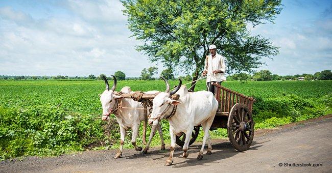 Un paysan roule avec son petit tracteur et sa charrette, quand surgit une porsche rouge qui le klaxonne