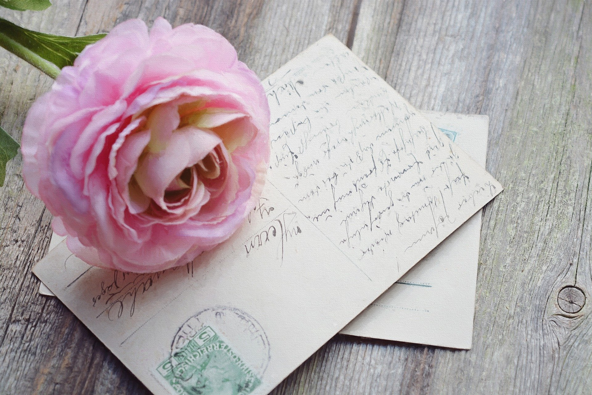 Postcard and a flower. | Source: Pixabay