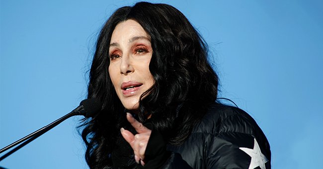 Cher Turns Attention to Gorilla Living above a Mall after Saving the World's Loneliest Elephant
