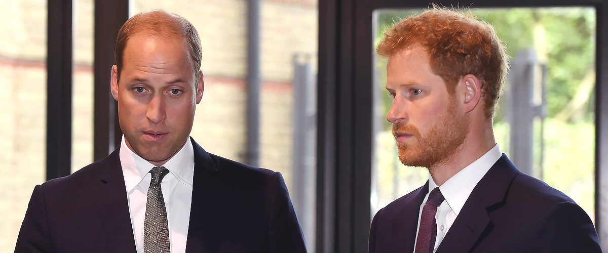 Harry and William Regretted Their Last Phone Call with Princess Diana before Her Death