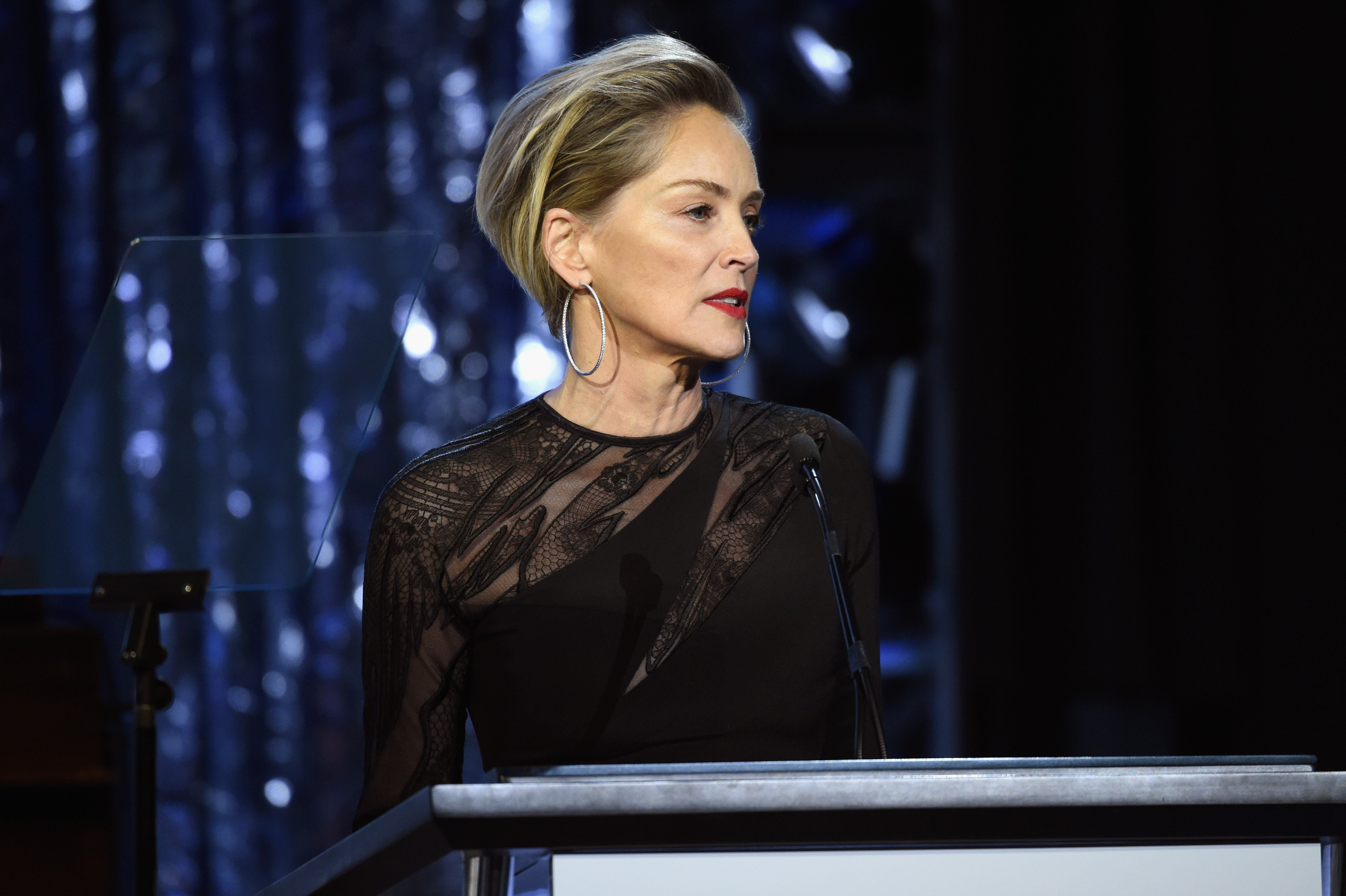 Actress Sharon Stone speaks onstage on the 25th Annual Elton John AIDS Foundation's Academy Awards Viewing Party at The City of West Hollywood Park on February 26, 2017 in West Hollywood, California | Photo: Getty Images
