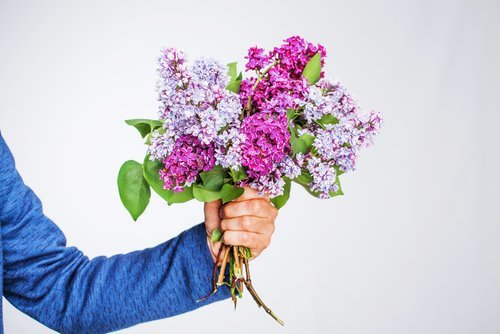 A man apologising with flowers. | Source: Shutterstock.