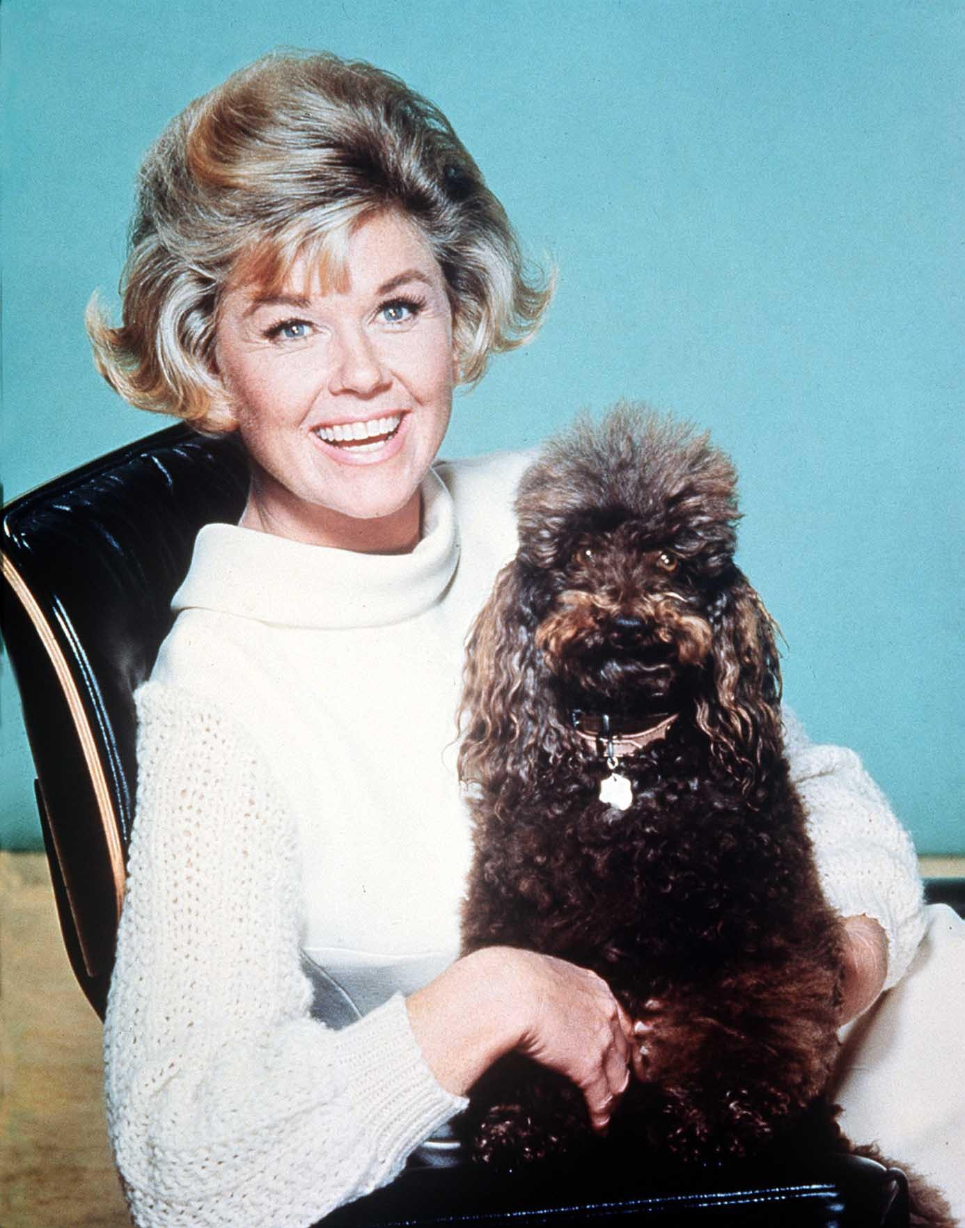American actress and singer Doris Day with a dog in 1968 | Photo: Getty Images