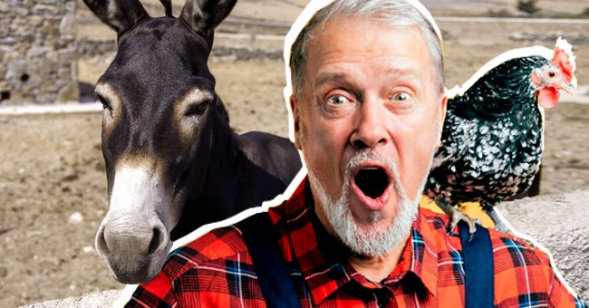 Parable of the Day: One Day a Farmer's Donkey Fell into a Well