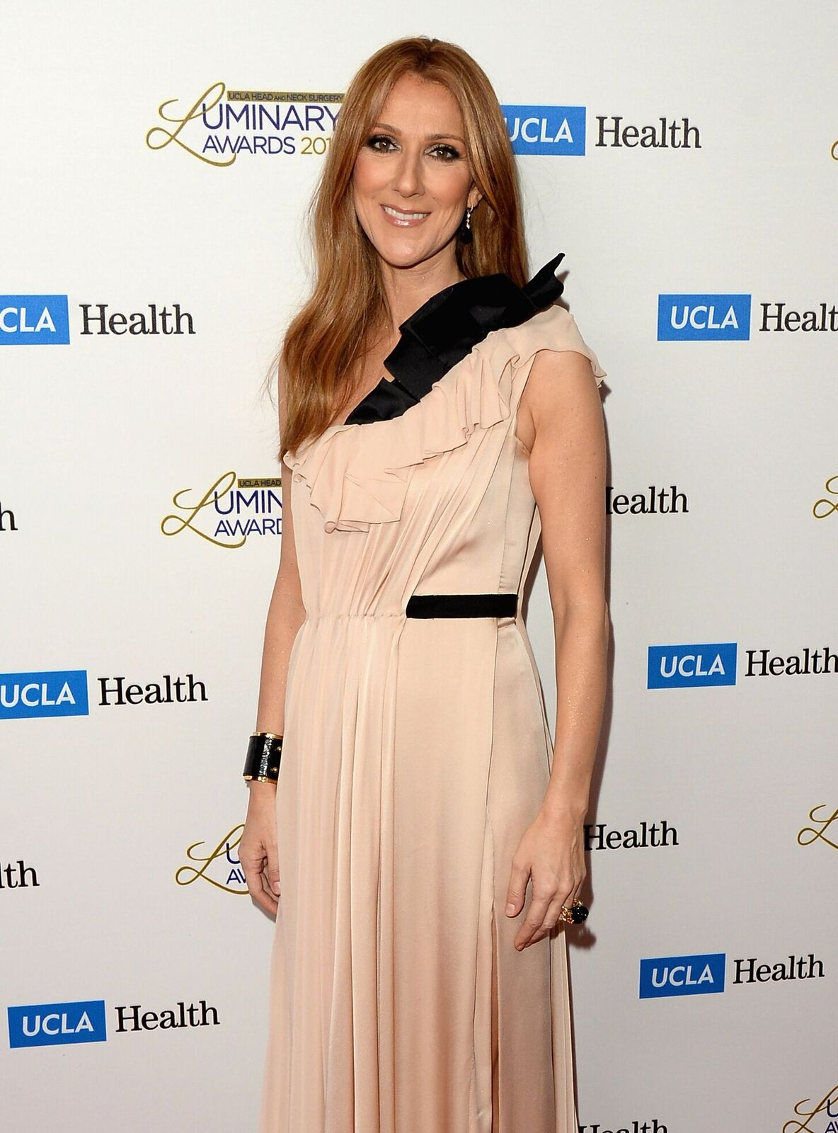 La musicienne Celine Dion assiste aux prix du luminaire de chirurgie de la tête et du cou à l'UCLA au Beverly Wilshire Four Seasons Hotel le 22 janvier 2014 à Beverly Hills, Californie | Photo: Getty Images