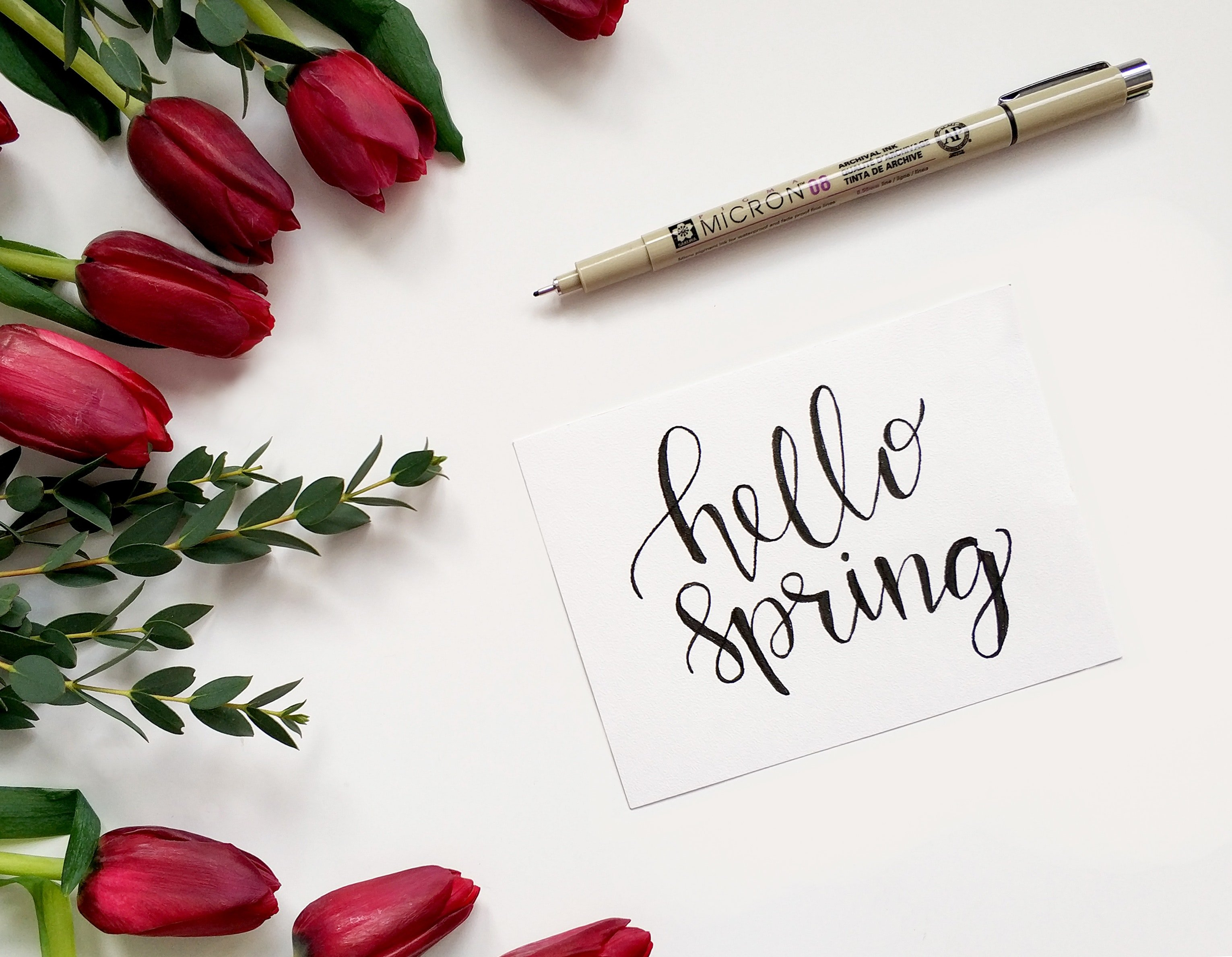 Welcome Spring. | Source: Pexels