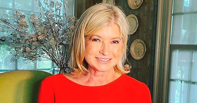 Martha Stewart, 79, Proves Age Is Just a Number as She Smiles Looking Fresh-Faced in a Photo