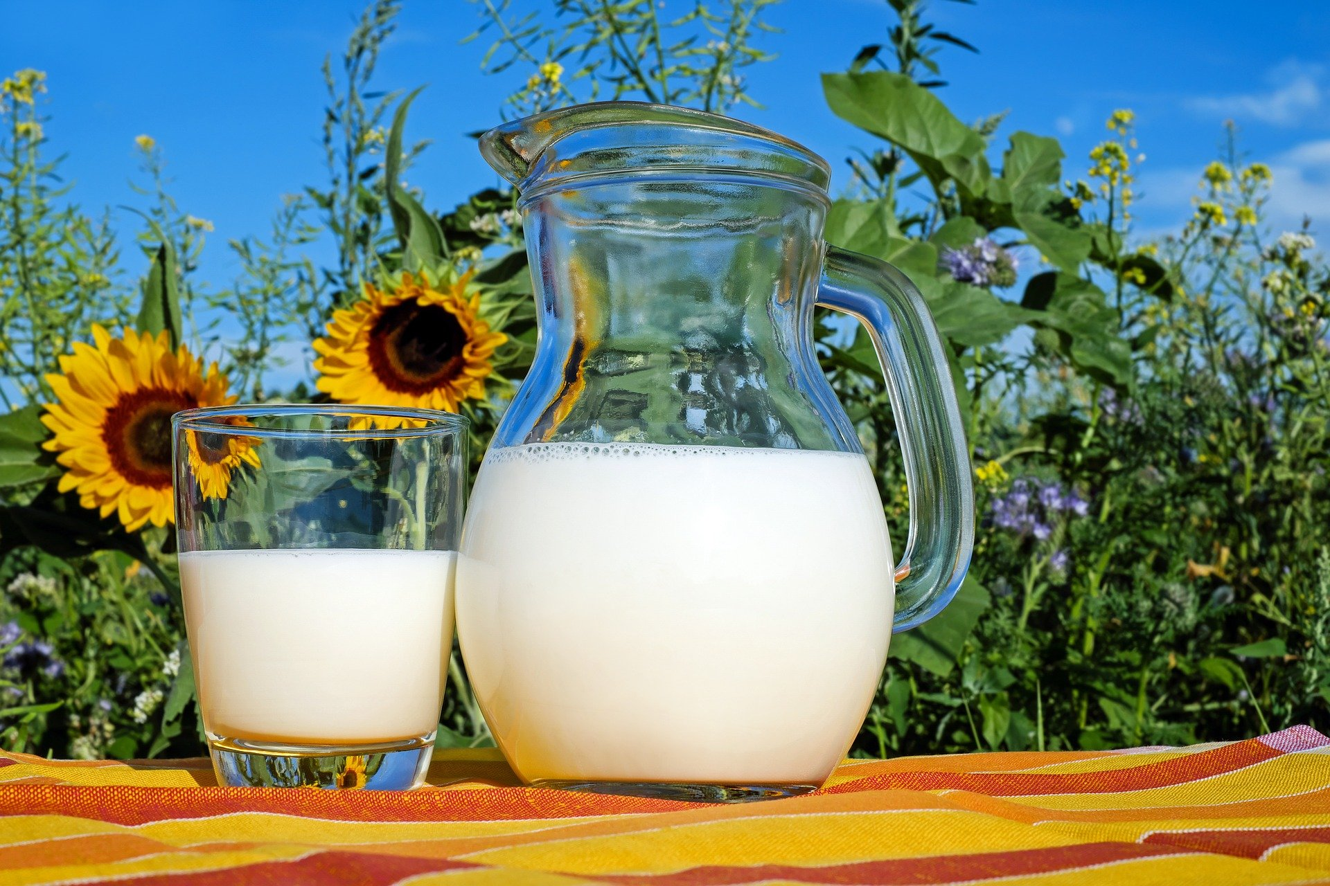 How much milk would the actors be able to milk?   Photo: Pixabay/Couleur