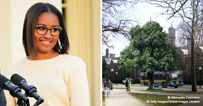 Sasha Obama reportedly hints she plans to study at the University of Michigan