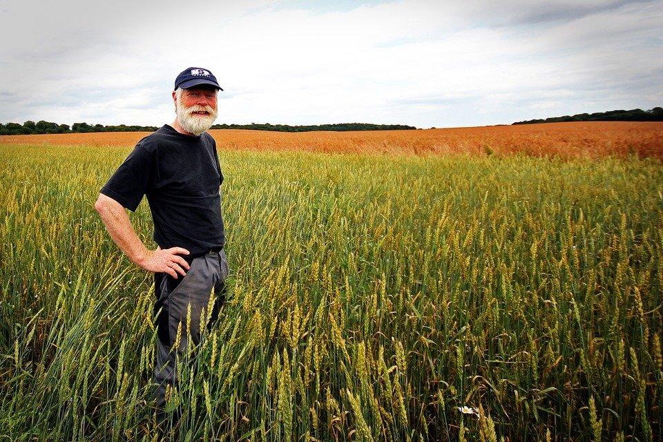 Un fermier | Photo : Pixabay