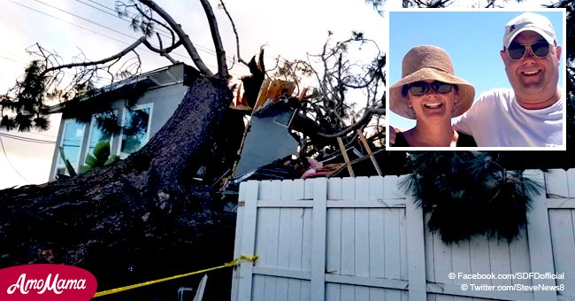 ND couple killed while sleeping after tree dropped onto their rental house in San Diego