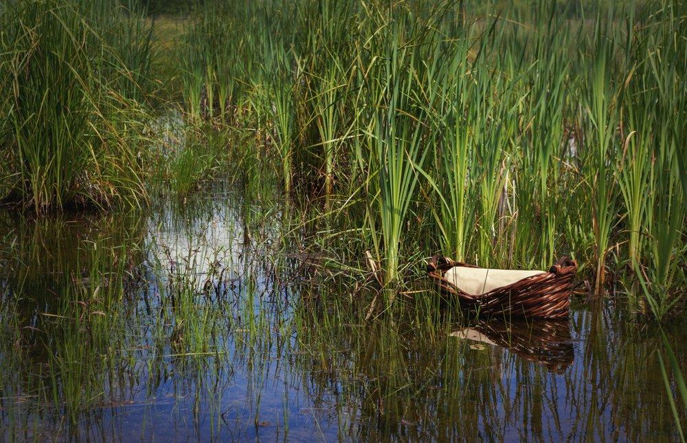 Cesta tejida flotando sobre el río.| Fuente: Shutterstock