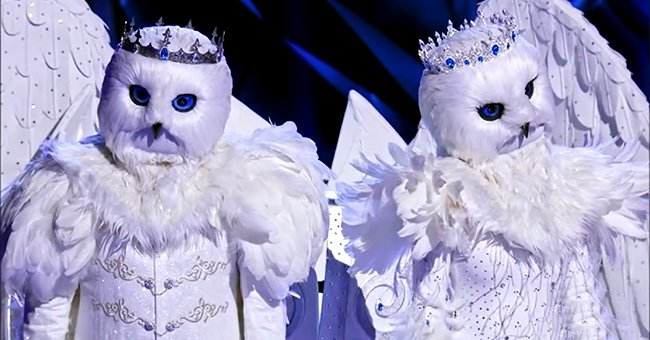 Fans Upset after 'The Masked Singer' Unmasks the Snow Owls — See Reactions to Their Elimination