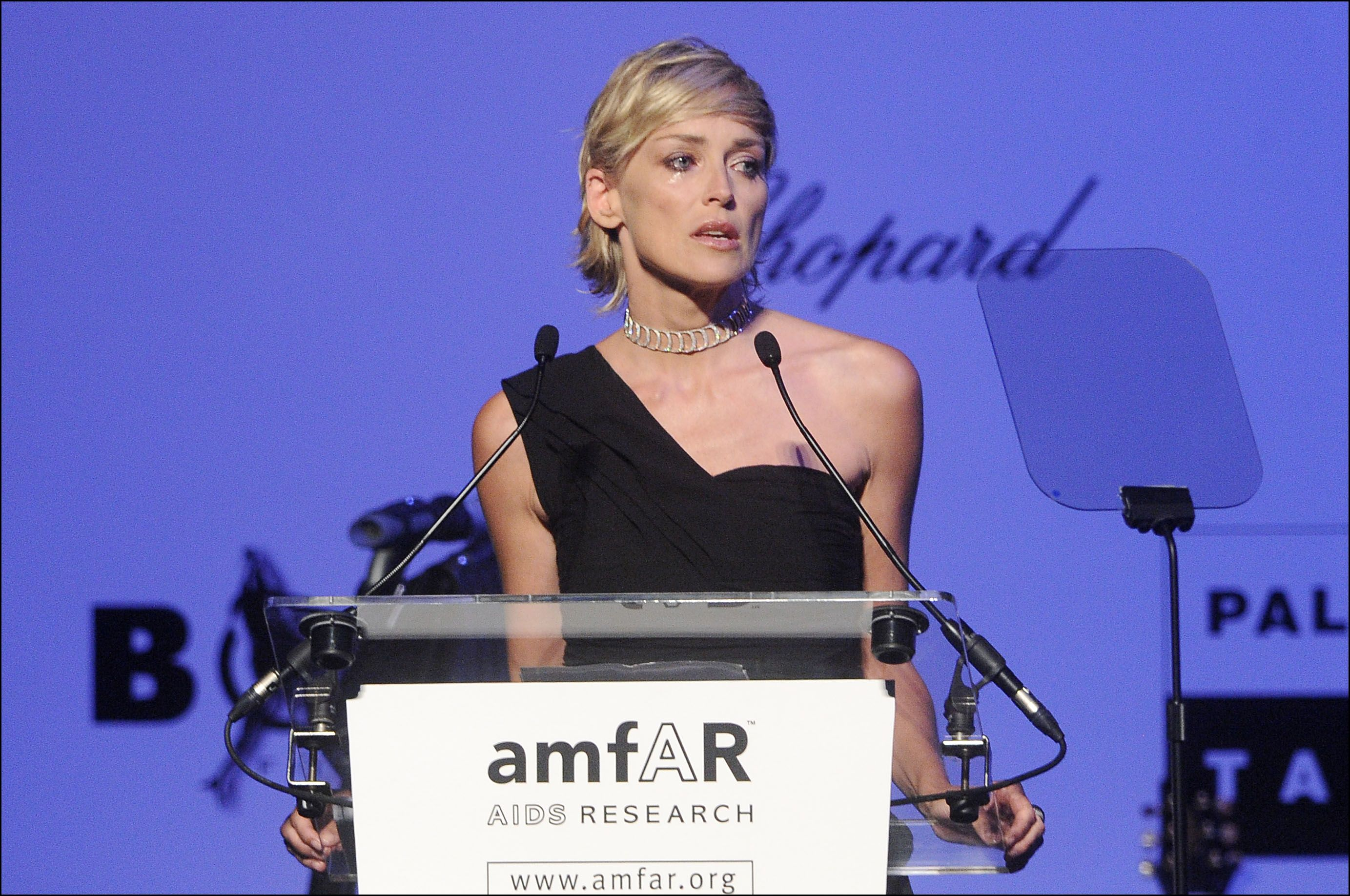 Sharon Stone at the AmfAR Cinema against AIDS Gala and auction during the 62nd Cannes Film Festival in Antibes, France on May 21, 2009. | Source: Getty Images