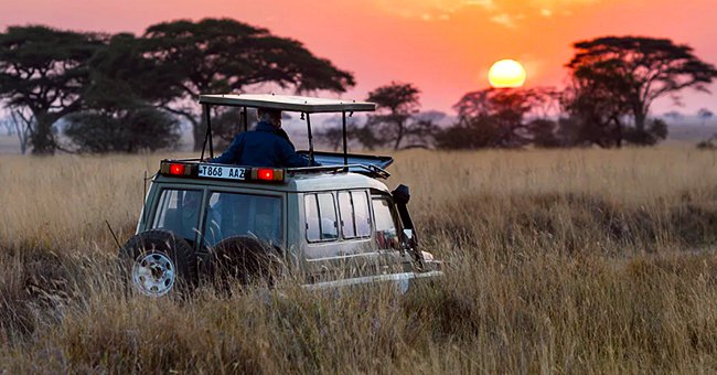 Daily Joke: A Wealthy Old Lady Decides to Go on a Photo Safari in Africa