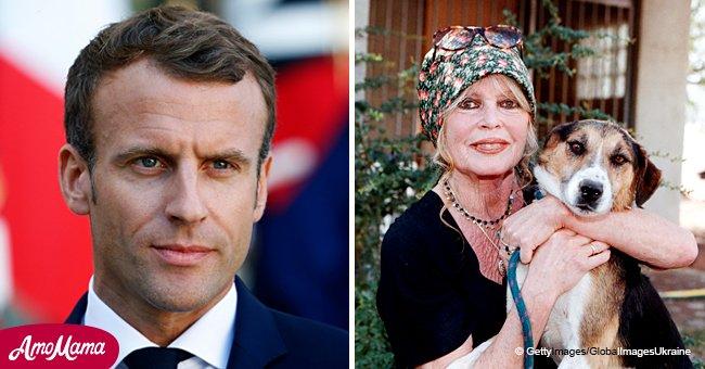 """Brigitte Bardot s'est adressée à Emmanuel Macron avec une demande de """"miracle"""", mais pas pour les gens"""