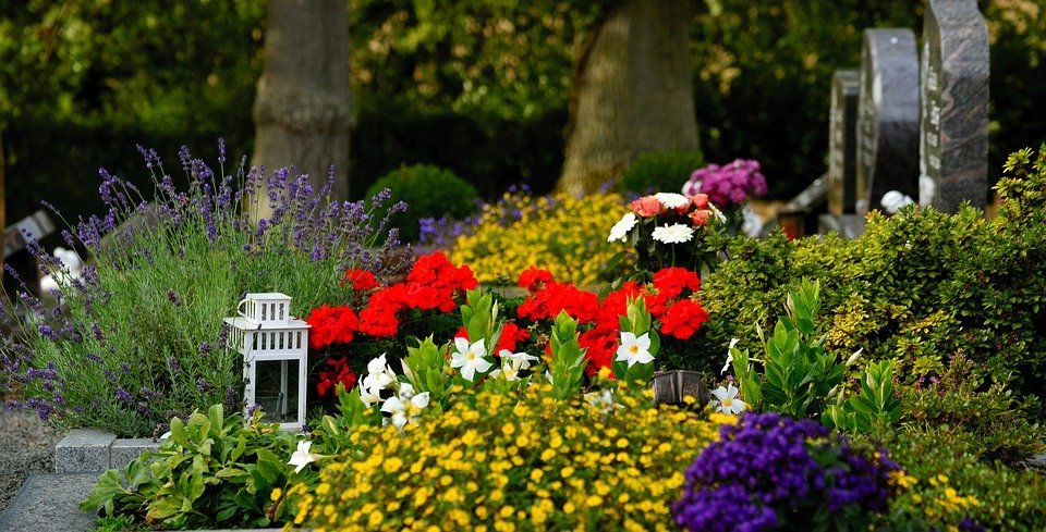 An arrangement of several flowers at the gravesite of someone at the cemetery.   Photo: Pixabay
