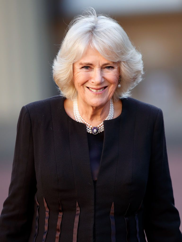 Camilla, Duchess of Cornwall at a reception for the London Taxi Drivers' Charity for Children at Buckingham Palace on February 14, 2019 | Photo: Getty Images