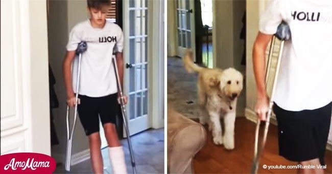 Dulcemente gracioso perro cojea imitando a su dueño que se rompió una pierna