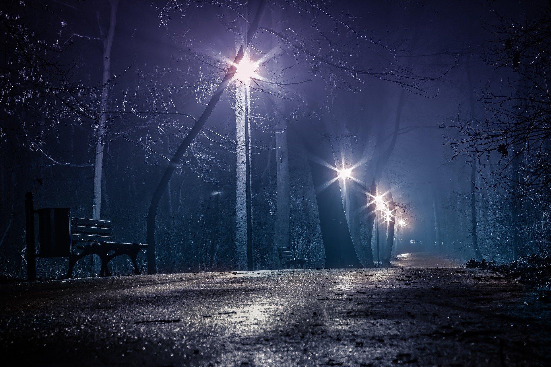 Parque oscuro en la noche. Fuente: Pixabay