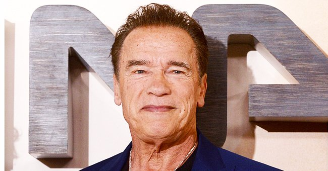 Arnold Schwarzenegger Buys Wooden Pipe Made by a Fan and Inspired by His 'Terminator' Character